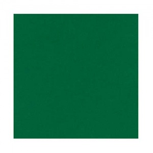 Ranger Opaque Embossing Powder - Green