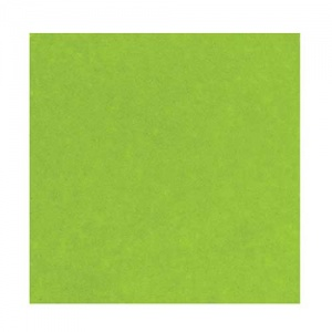Ranger Opaque Embossing Powder - Lime Green