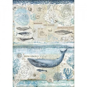 Stamperia A3 Rice Paper - Arctic Antarctic - History of the Whale