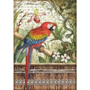 Stamperia A4 Rice Paper - Amazonia - Parrot
