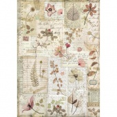 Stamperia A4 Rice Paper - Pressed Flowers